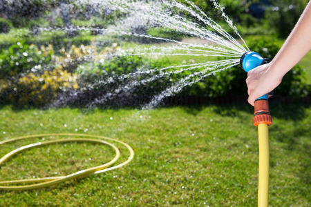 Womans hand with garden hose watering plants, gardening concept  Stock Photo