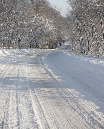 snow covered forest: Empty snow covered forest road in winter landscape