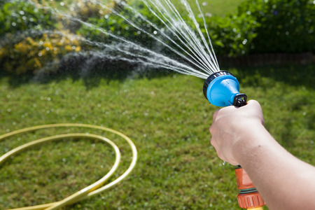 Woman's hand with garden hose watering plants and lawn Stok Fotoğraf
