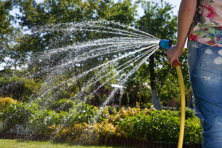 Woman holding garden water hose watering garden Reklamní fotografie