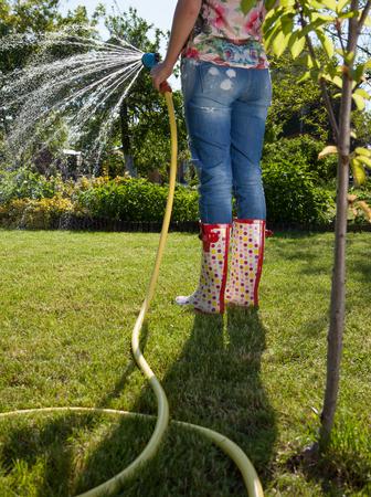 water garden: Woman holding garden water hose watering garden Stock Photo