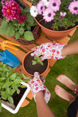 Gartenarbeit Konzept, barfuß Frau Vergießen Blumen