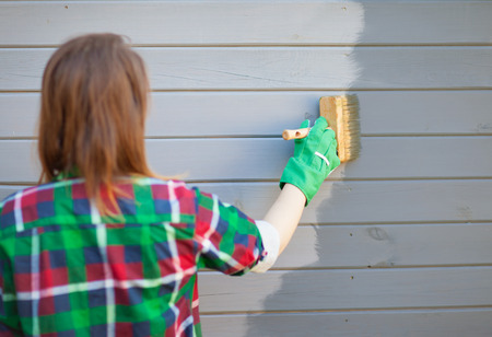 tongue and groove: Woman applying protective varnish or paint on wooden house tongue and groove cladding elevation wall. House improvement diy concept.