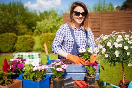 Vrolijke jonge vrouw die handschoenen en osteospermumbloemen van zonnebril oppotten. Tuinieren concept