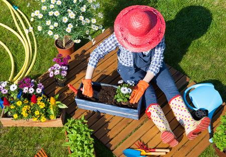 Frau trägt Handschuhe, Strohhut und Gummistiefeln Vergießen osteospermum Blumen. Gartenarbeit Konzept.