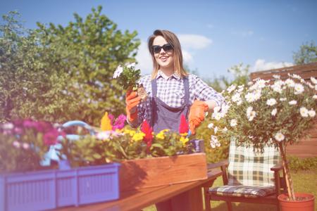 Freundliche junge Frau mit Handschuhen und Sonnenbrillen Vergießen Osteospermum Blumen. Gartenarbeit Konzept. Standard-Bild - 74409376