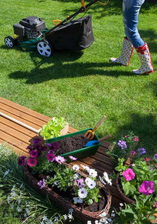 Frau mäht Gras mit Rasenmäher im Garten, Gartenarbeit Konzept Standard-Bild - 74620194