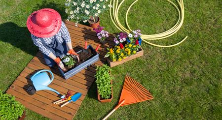 Frau sitzt auf dem Rasen, Handschuhe, Strohhut Blumenerde Blumen tragen. Gartenarbeit Konzept Standard-Bild - 74409377
