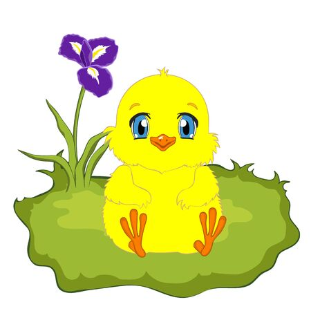 loveable: Cute yellow cartoon baby chicken on spring background. Chick sitting on the green grass. Illustration
