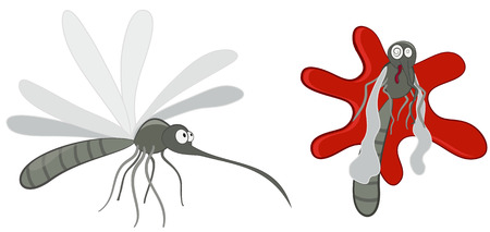 Mosquito and squashed mosquitoes.