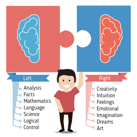 analytical: Left and right brain functions concept, analytical and creativity