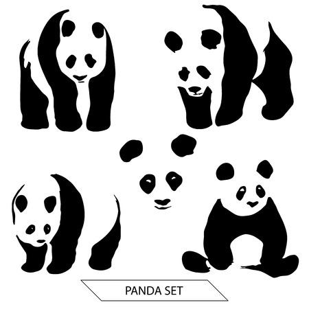 animal silhouettes: Set of hand drawn pandas isolated on white background.