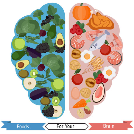 Concept of food helpful for healthy brain Illustration