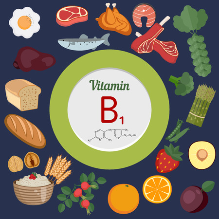 b1: Vitamin B1 or Thiamin and vector set of vitamin B1 rich foods. Healthy lifestyle and diet concept. Illustration