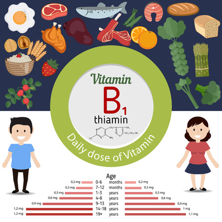 doze: Vitamin B1 or Thiamin and vector set of vitamin B1 rich foods. Healthy lifestyle and diet concept. Daily doze of vitamin B1.