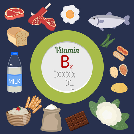 riboflavin: Vitamin B2 or  Riboflavin and vector set of vitamin B2 rich foods. Healthy lifestyle and diet concept.