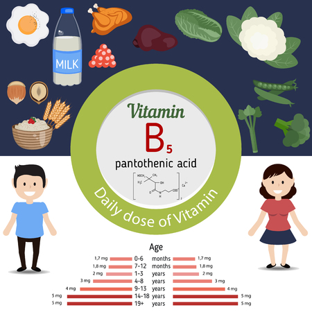 doze: Vitamin B5 or Pantothenic Acid and vector set of vitamin B5 rich foods. Healthy lifestyle and diet concept. Daily doze of vitamin B5. Illustration