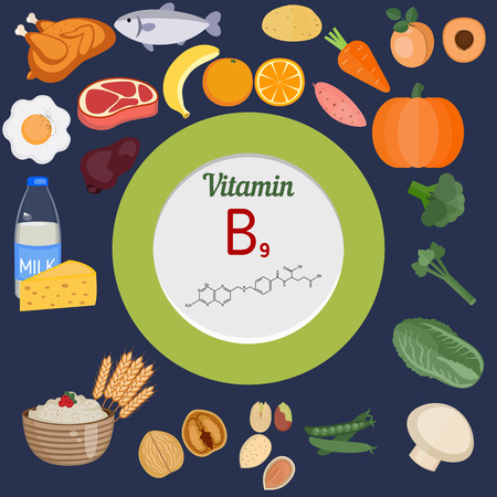 Vitamin B9 or folic acid and vector set of vitamin B9 rich foods. Healthy lifestyle and diet concept. Иллюстрация