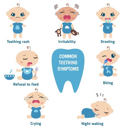 Baby teething symptoms - teething rush, drooling, irritability, refusal to feed, biting, crying. Vectores
