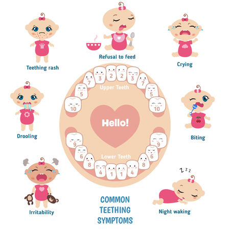 teething: Baby teething symptoms - teething rush, drooling, irritability, refusal to feed, biting, crying. Illustration