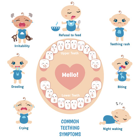 Baby teething symptoms - teething rush, drooling, irritability, refusal to feed, biting, crying. 일러스트