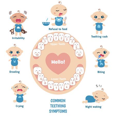 Baby teething symptoms - teething rush, drooling, irritability, refusal to feed, biting, crying. Illustration