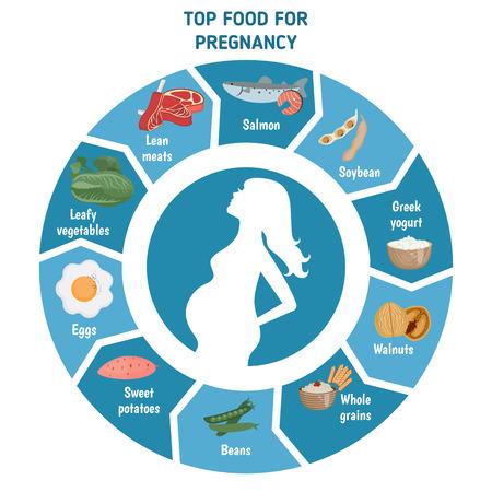 Embarazada infografía dieta mujer. Silueta de la mujer embarazada y alimentos para el embarazo. Ilustración de vector