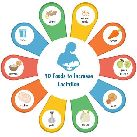 présentation infographique pour augmenter la lactation.