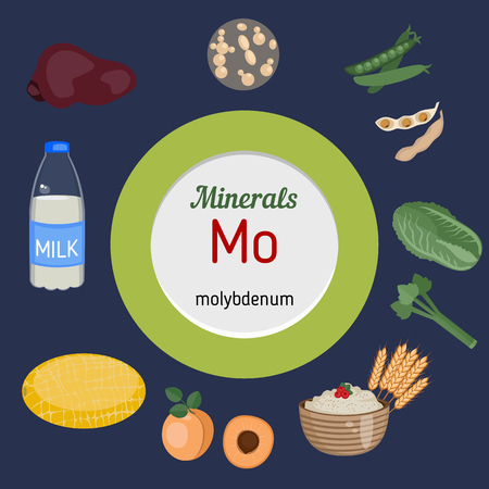 mo: Minerals Mo and vector set of minerals Mo rich foods. Healthy lifestyle and diet concept.