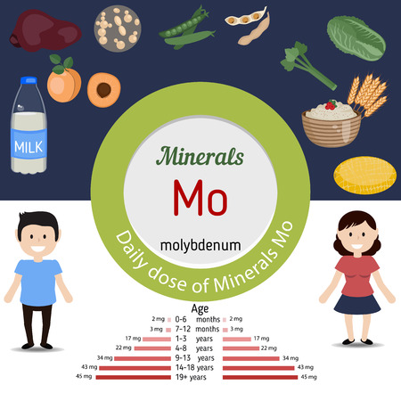 Minerals Mo and vector set of minerals Mo rich foods. Healthy lifestyle and diet concept. Daily dose of minerals of molybdenum.