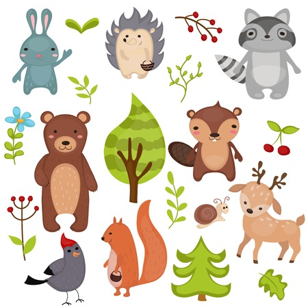 bruin: Forest animals set of icons and illustrations.