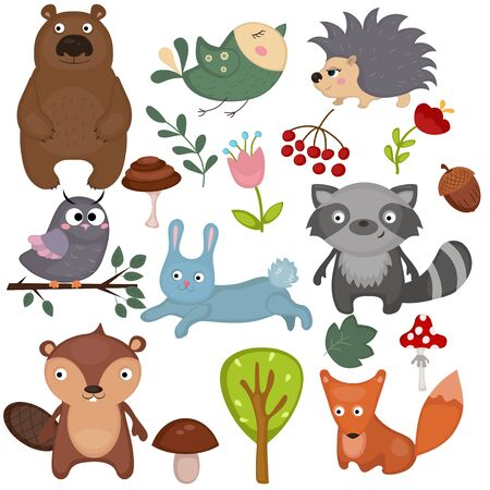 bear berry: Forest animals set of icons and illustrations.