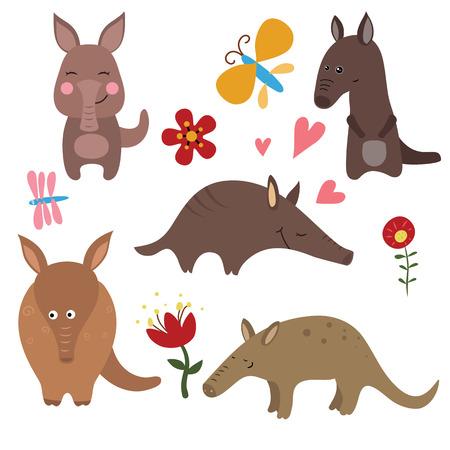 aardvark: Set of different aardvarks on white background. Illustration
