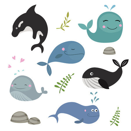dorsal: Set of different whales on white background.