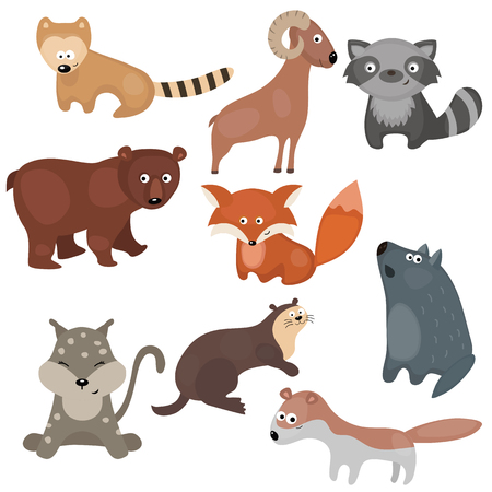 mink: Set of different animals of North America on white background.