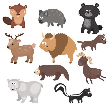 Conjunto de diversos animales de América del Norte sobre fondo blanco.