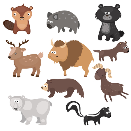 wolverine: Set of different animals of North America on white background.