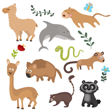 spectacled: Set of different animals of South America on white background.