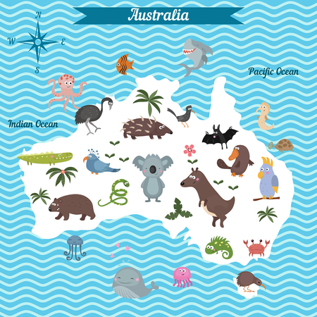 platypus: Cartoon map of Australia continent with different animals. Colorful cartoon illustration for children and kids. Australia mammals and sea life. Cartoon design concept for kids education,poster design.