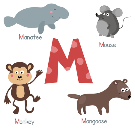 mongoose: Cute vector zoo alphabet. Funny cartoon animals: manatee, mouse, mongoose, monkey.