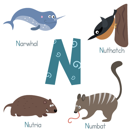 nutria: Cute vector zoo alphabet. Funny cartoon animals: narwhal, nuthatch, nutria, numbat.