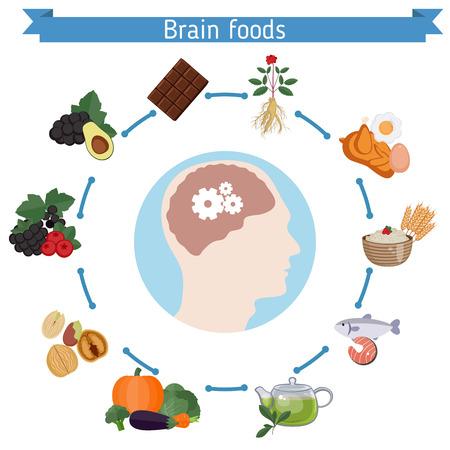 Infographics of food helpful for healthy brain Ilustração
