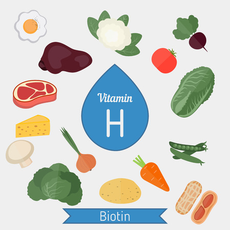 Vitamin H or Biotin and vector set of vitamin H rich foods. Healthy lifestyle and diet concept. Illustration