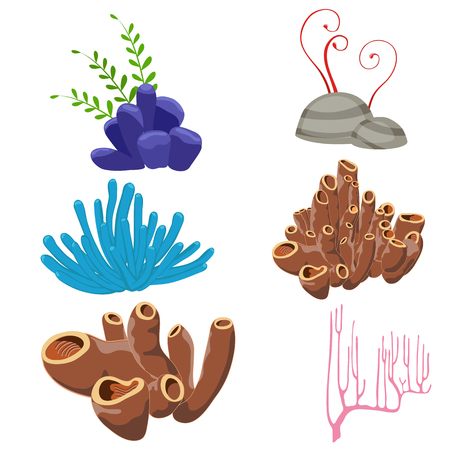 Set of cartoon underwater plants on a white background. Illustration