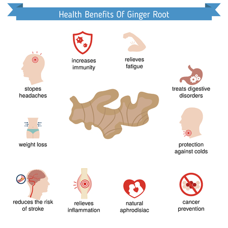 colds: Foods infographics. Health benefits of ginger root. Illustration