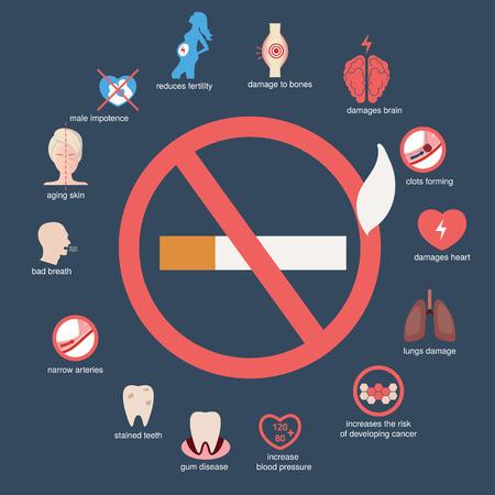 건강 및 의료 infographic. 흡연이 몸에 어떤 영향을 미치는지. 일러스트