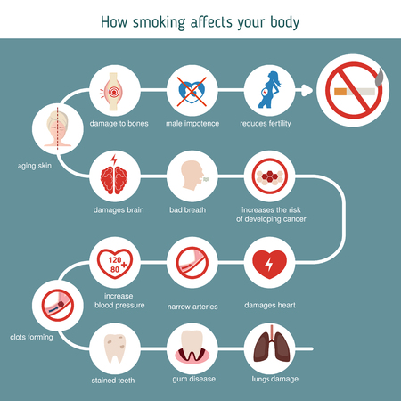Health and healthcare infographic. How smoking affects your body. 일러스트