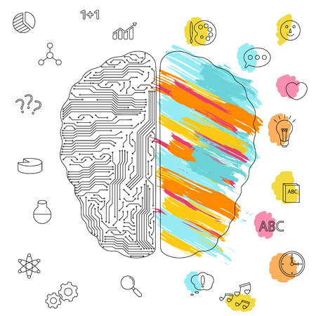 Left and right brain functions concept, analytical and creativity