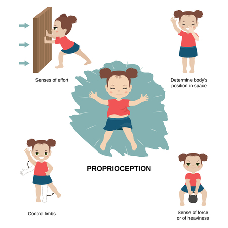 Vector illustration of human senses. Sense of Proprioception: efforts, body's position in space, control limbs, force or of heaviness.
