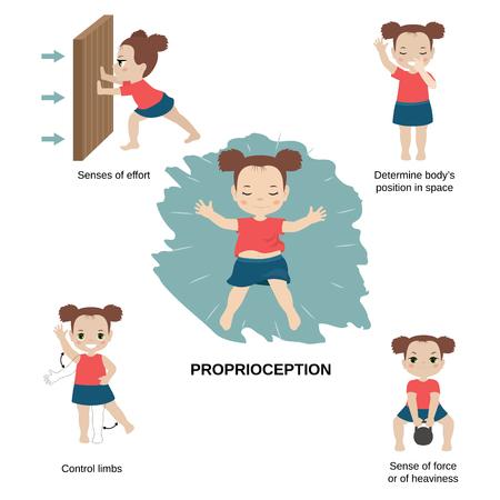 Ilustración de vector de los sentidos humanos. Sentido de propiocepción: esfuerzos, posición del cuerpo en el espacio, extremidades de control, fuerza o pesadez. Ilustración de vector